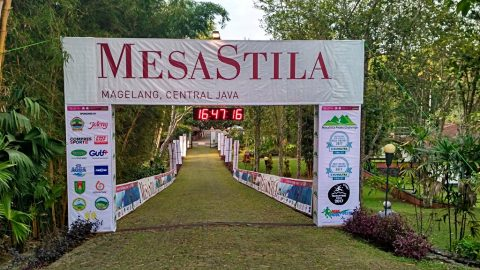 [RACE REVIEW] : Mesastila Peaks Challenge 2017